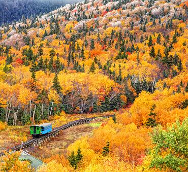 Ferrovia Vigezzina Centovalli: il treno del foliage