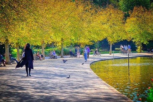 autunno caratteristiche  caratteristiche autunno  dell'autunno