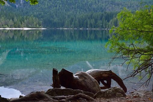 lago di tovel hotel  lago di tovel immagini  lago di tovel dove dormire
