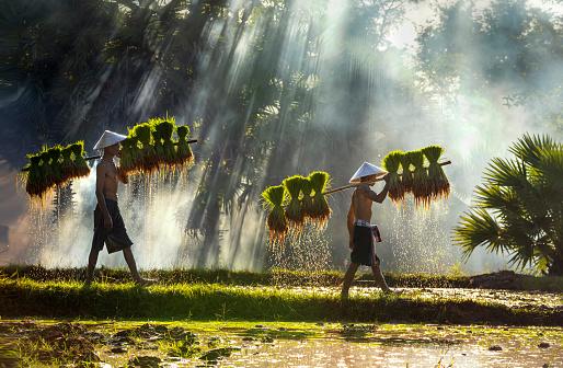 Azerai Hue La Résidence  Azerai Can Tho Mekong hue vietnam destinazioni 2021 vietnam