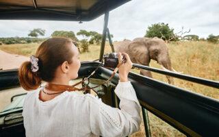 Bloccato in casa? Concediti Un Safari in Africa...Privato!