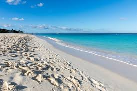 Aruba Le Caraibi olandesi: dove si trova, cosa vedere, periodo migliore per visitarla, cosa fare o mangiare, eventi