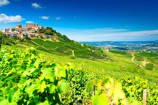 Cosa si puo' fare in Zona Gialla Piemonte: cosa fare, fino a quando in zona gialla, cosa vedere e dove andare