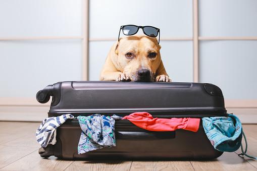 lista cose da mettere in valigia