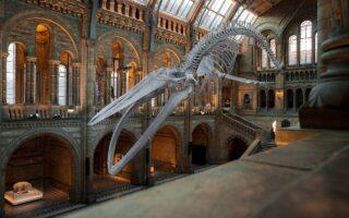 British Museum - Arte e archeologia a Londra