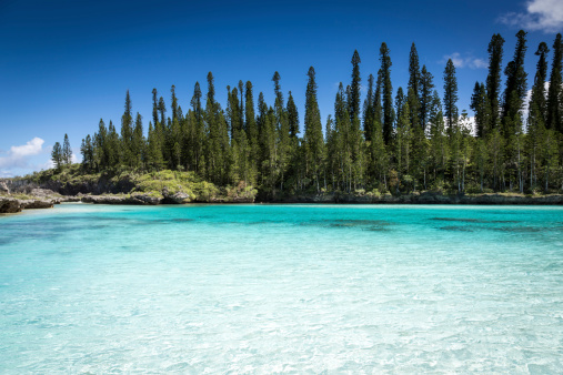 nuova caledonia isola die pini isola dei pini isola dei pini caledonia nuova caledonia mare